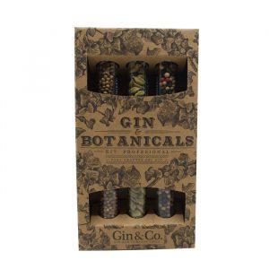 pack gin & botanicals kit professional